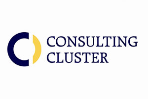 consultingcluster_web